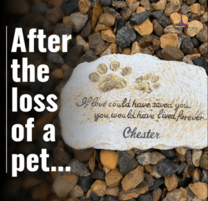 After the Loss of a Pet